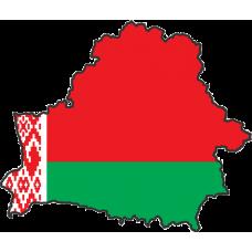 Доставка глушителей в Беларусь