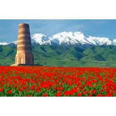 Доставка глушителей в Киргизстан