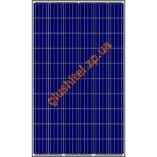 Солнечная панель Amerisolar AS-6P30 270 W