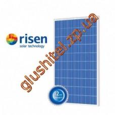 Солнечная панель Risen RSM-6-275 P, 275 Вт, 5 BB